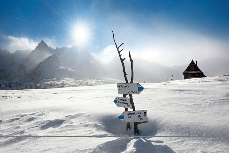 Winter Ideas Image 1