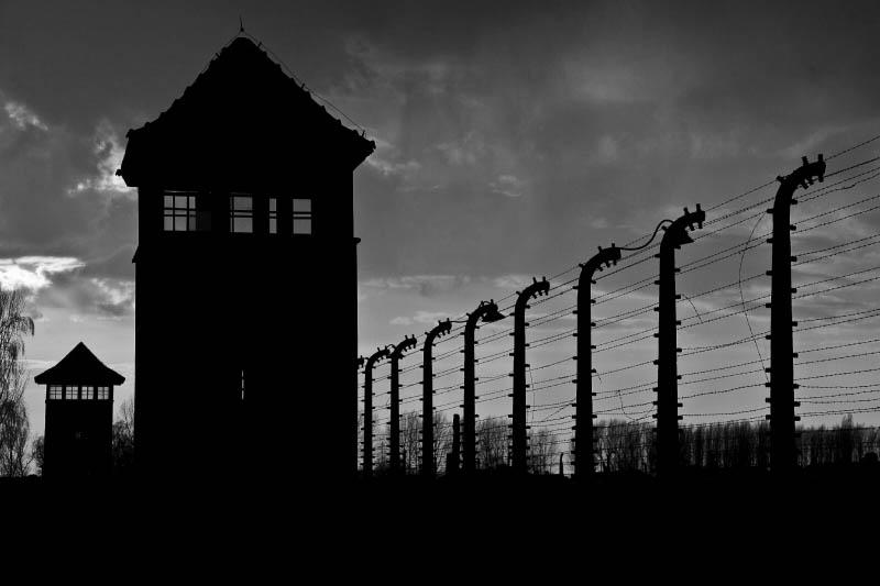 Auschwitz-Birkenau Memorial and Museum Visit Image 5
