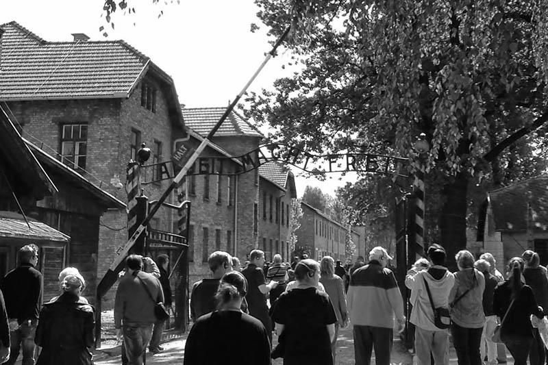 Auschwitz-Birkenau Memorial and Museum Visit Image 6
